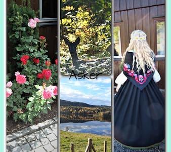 Separate rooms 40 sq. met. in Asker, close to Oslo