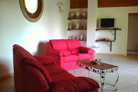 APPARTAMENTO in casa singola - Viano