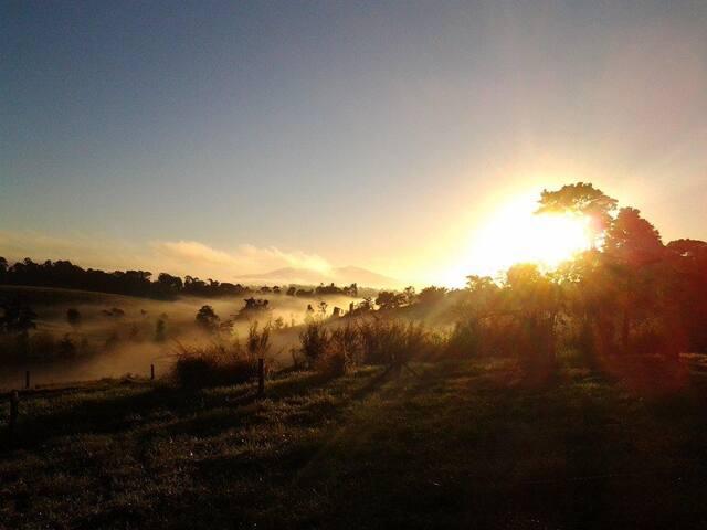 Sunrise over Mt Bartle Frere, Queensland's Highest Mountain.