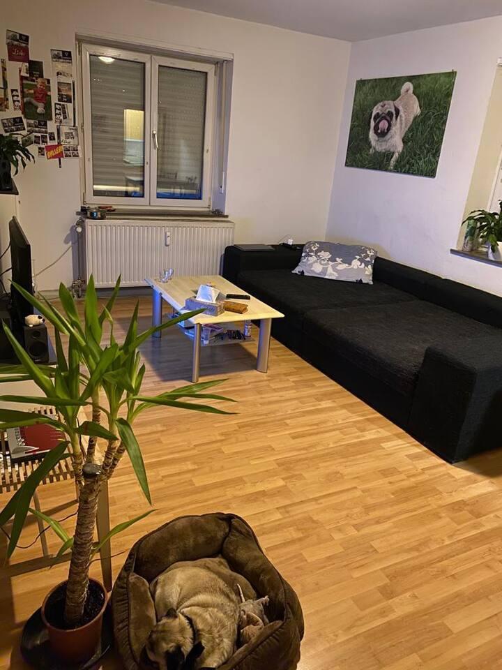 Gästezimmer in gemütlicher Wohnung, top Lage