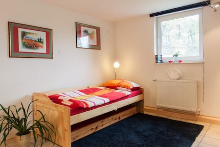 Charming room near Würzburg :-) - Leinach - Hus