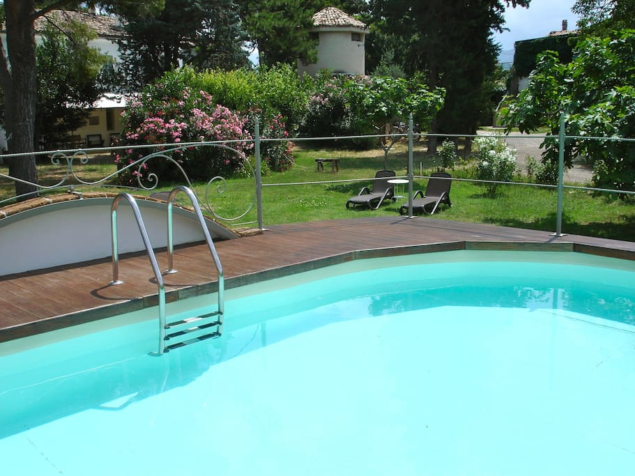 Pool with the equipped solarium