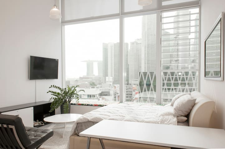Luxury Loft in the Center of SG - Singapore - Lägenhet