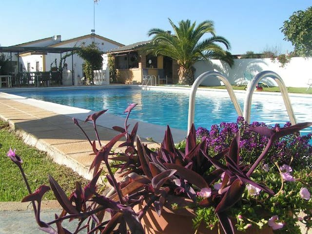 B&B Finca el Juncal Andalucia - Cordoba - Bed & Breakfast