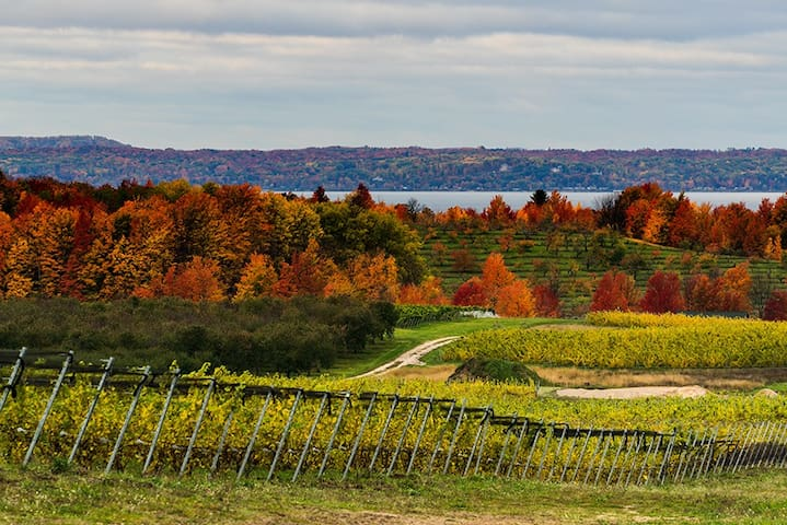 Minutes From Beautiful Old Mission Peninsula's Wine Country.