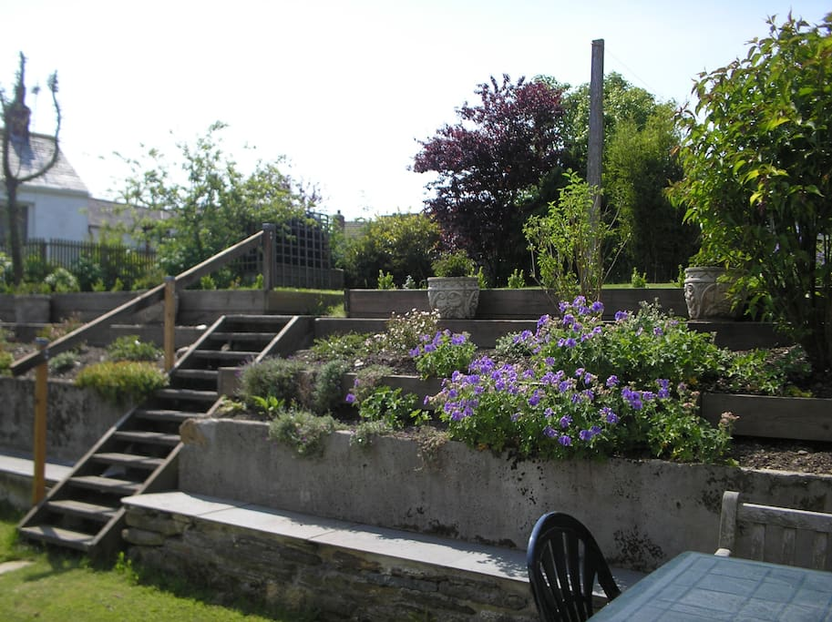 Rear Garden from the Back Door
