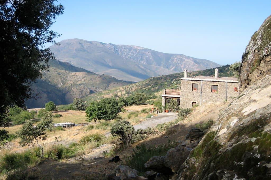 Cortijo Opazo, set in the heart of a great landscape.