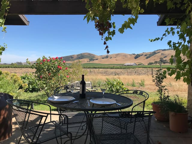 Spectacular Views, Vines, in Heart of Wine Country