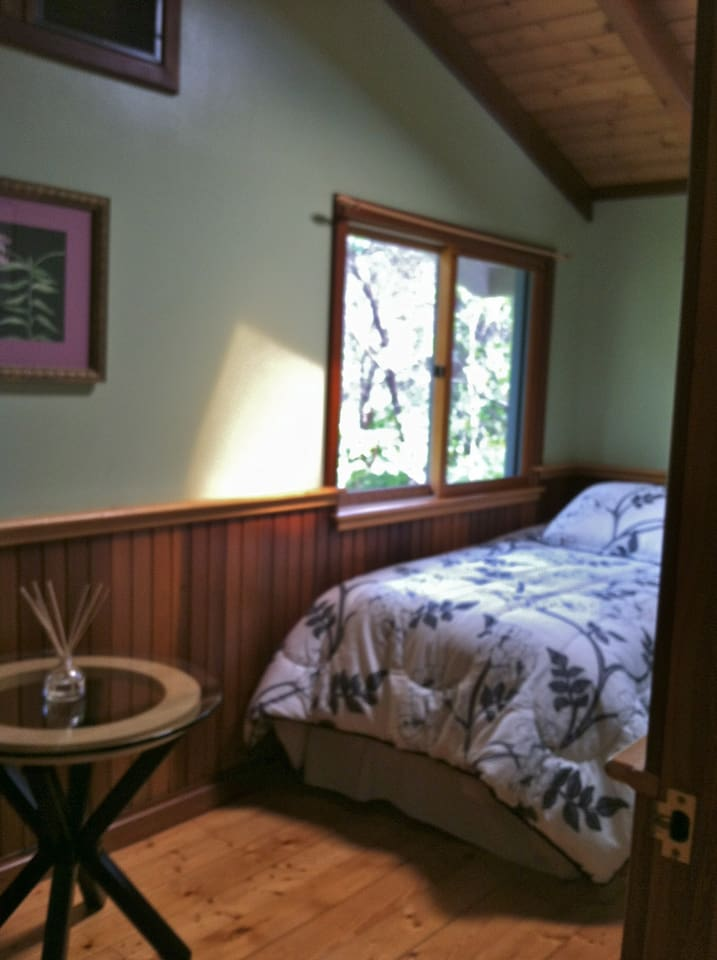 Share a room with a friend and wake to the sounds of the rain forest surrounding your windows..