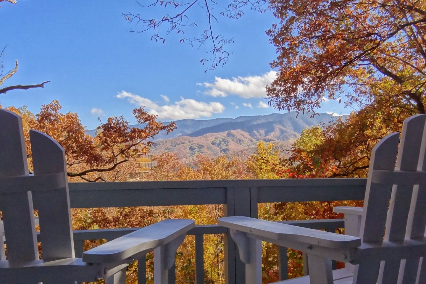 View of the smoky mountains from every room in the cabin (Trees have been trimmed back since)