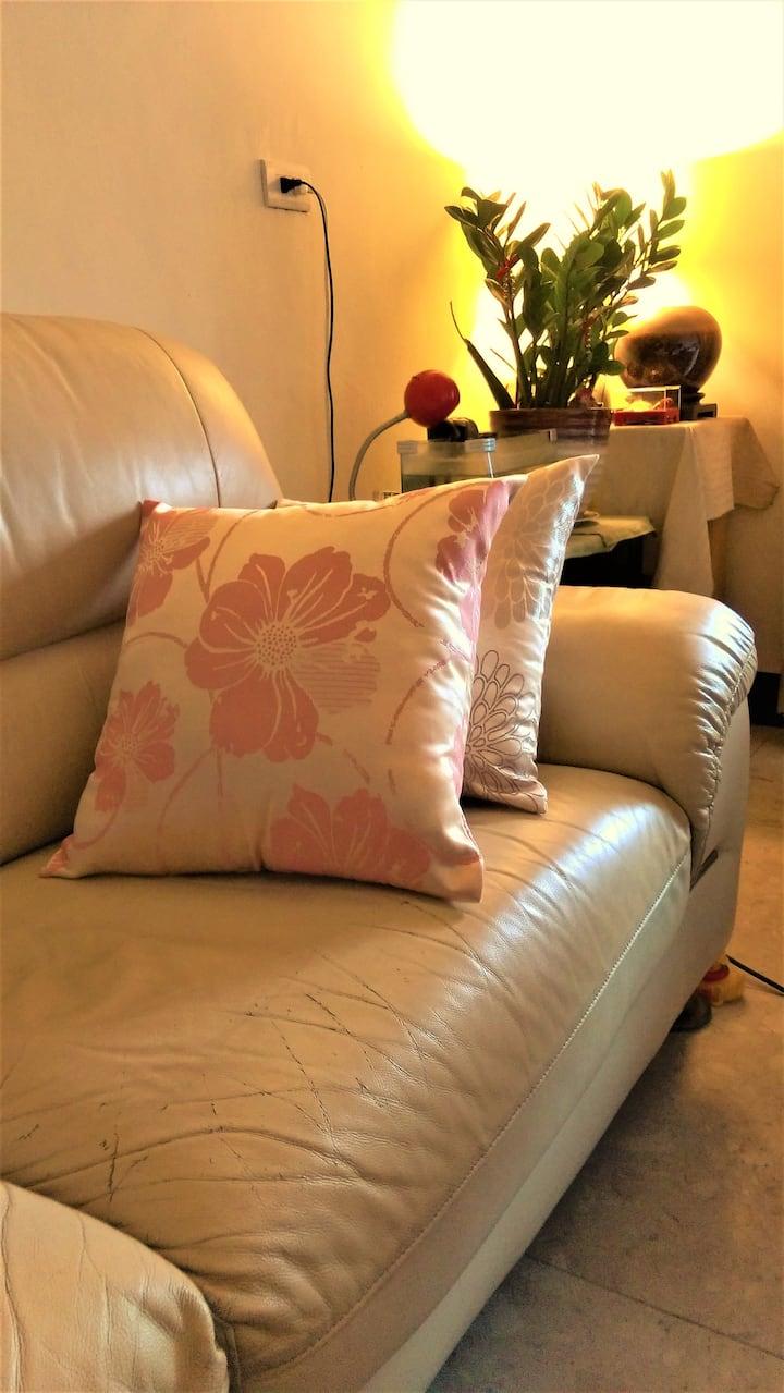分享家--樓下免費接駁車/特別提供舒適的冷氣沙發區,歡迎暫時落腳竹北的旅人/洽公/背包客舒適溫馨的家