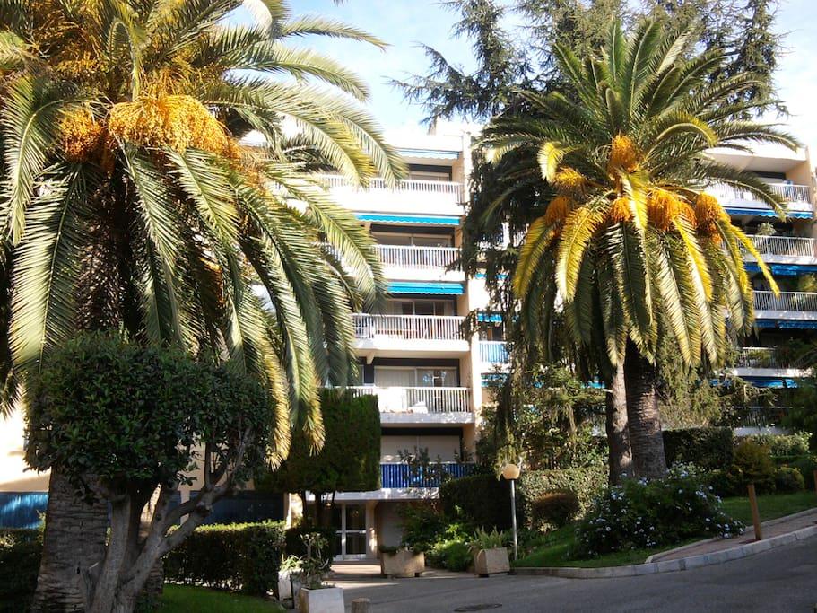 Entrée de l'immeuble (la terrasse est au 4eme étage entre les palmiers
