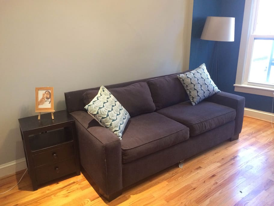 Comfy pullout couch from West Elm, no horrible bar digging into your back!