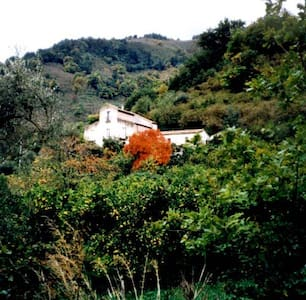 Farm-house in Sicily in the nature - Sant'Angelo di Brolo
