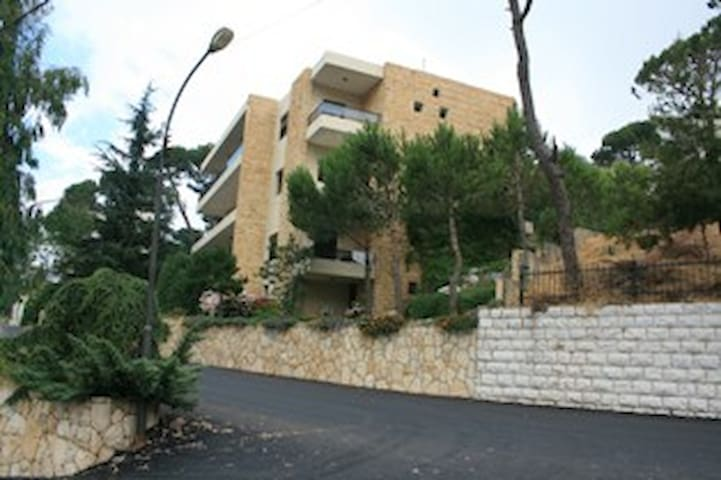 Beautiful house in Aley - Lebanon