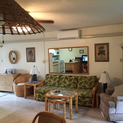 Kihei Kai Nani Maui 1 bedroom beach condo