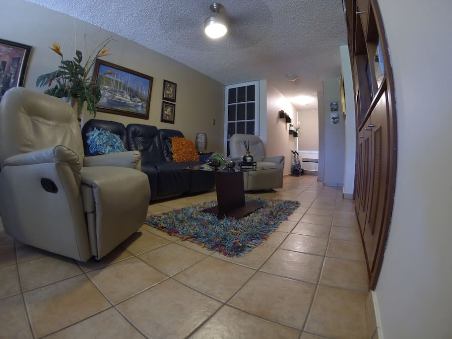Living room and entrance door.