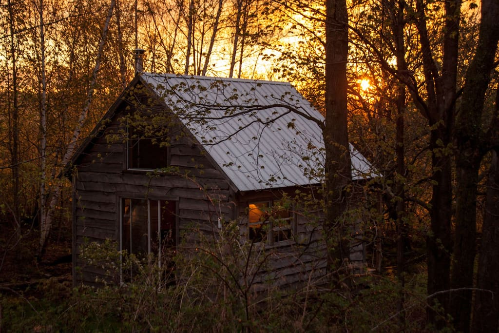 Evening light on the cabin
