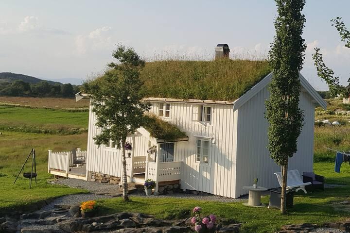 Gammalhuset på Neshåjen, Nordlandshus med sjarm.