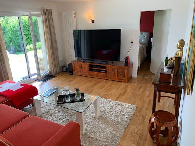 Living room with home cinema