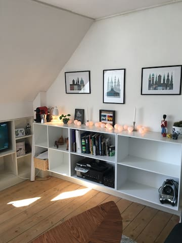 Cozy apartment right by city center with garden