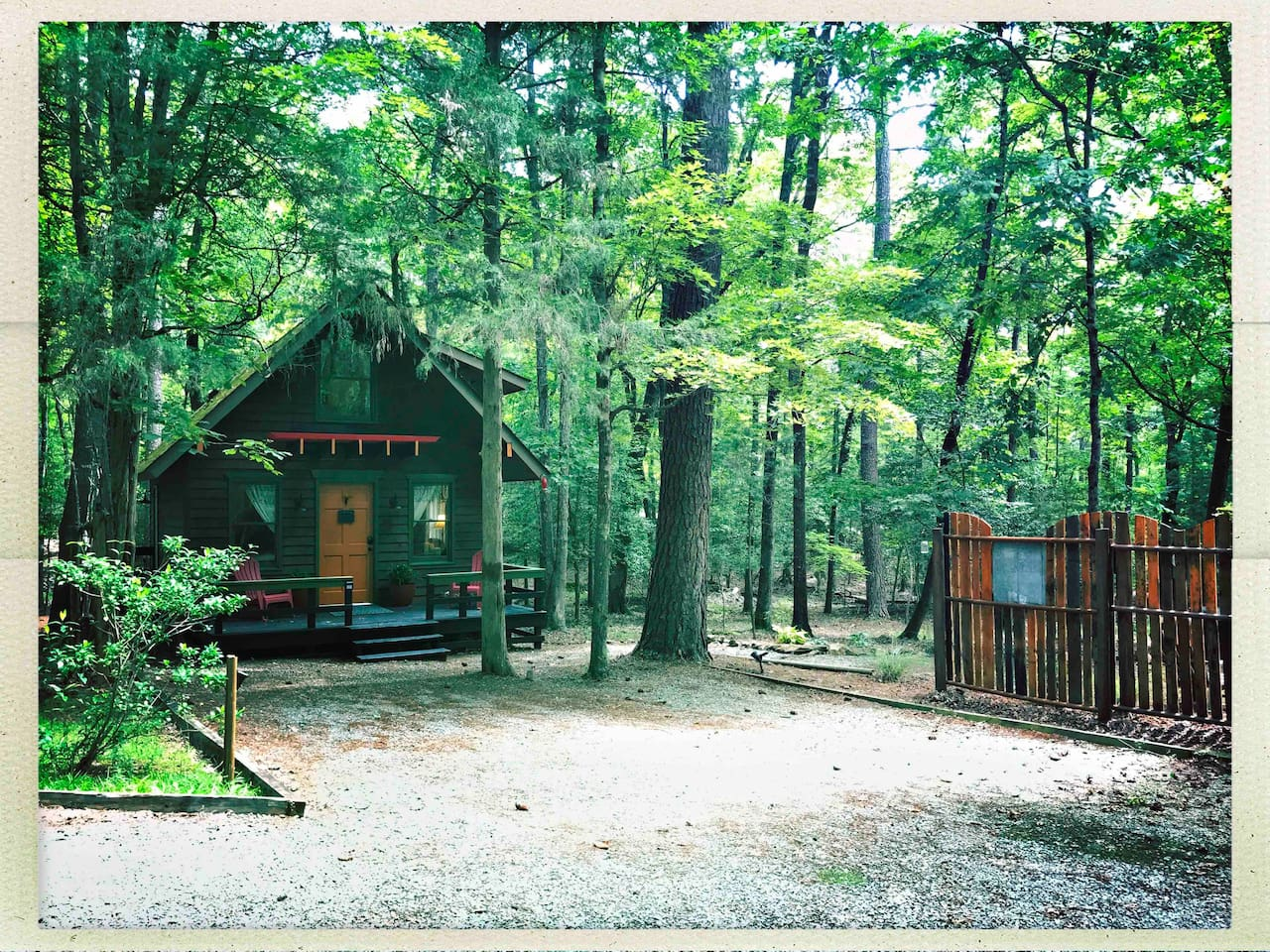 View of the cabin during the summer - our forest's lush canopy provides lots of shade and cool breezes