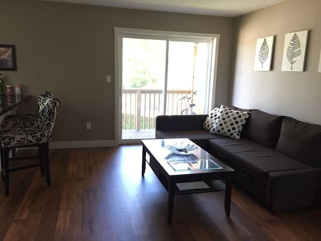 Cosy Sofa Bed In A New Apartment - Strathroy