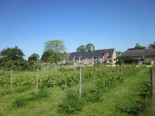 Manoir de la Noue-Domaine Chesnaies - Denée - Casa