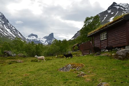 Charming mountain cabin in Vengedalen