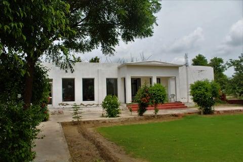 The Rohit Vilas