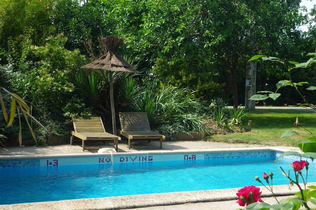 piscine privé