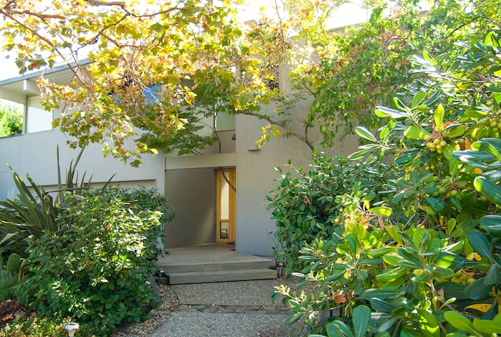 HUGE  6B/4b House+  Office/Baby Room - Palo Alto
