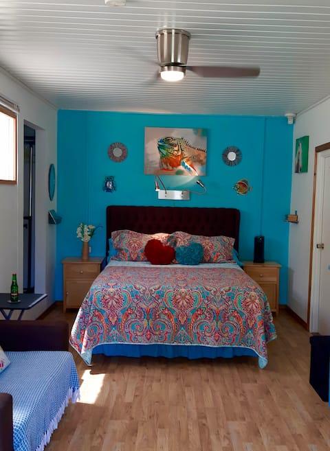 Cosmo Caribbean Aruba - Studio 47
