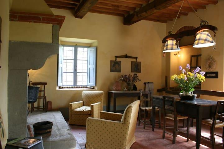 Elegant coutryhouse by Florence - Reggello - Apartment