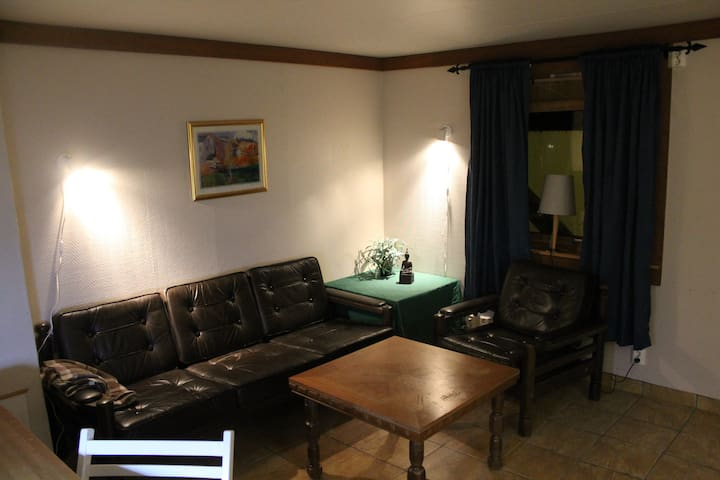 Studio apartment near the hospital - Rana - Apartamento