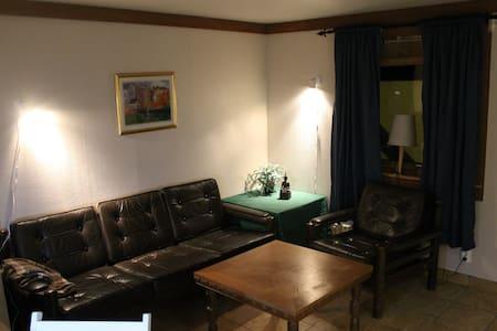 Studio apartment near the hospital - Rana - Leilighet