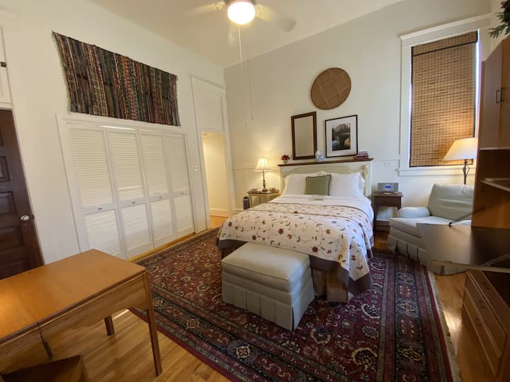 Evelyn: Snug Studio Offers Rich Comfort