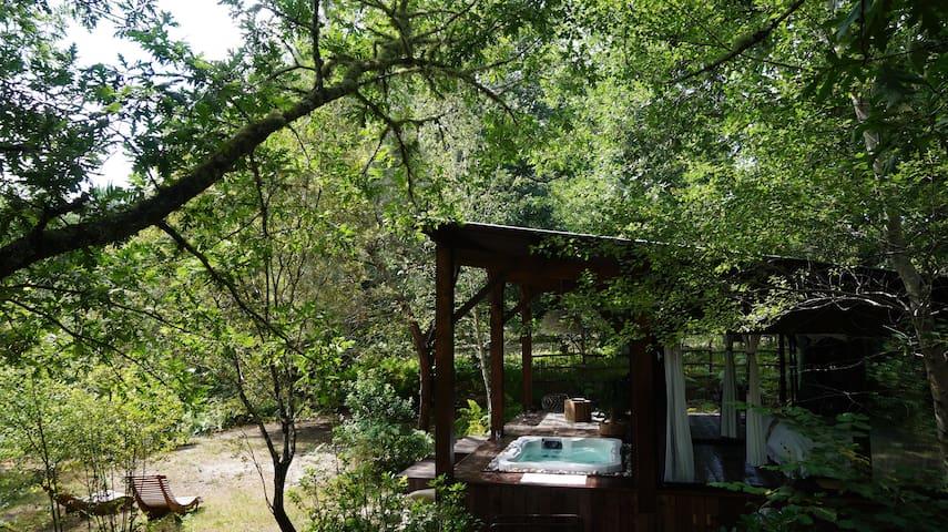 cabane et spa dans les arbres en aquitaine
