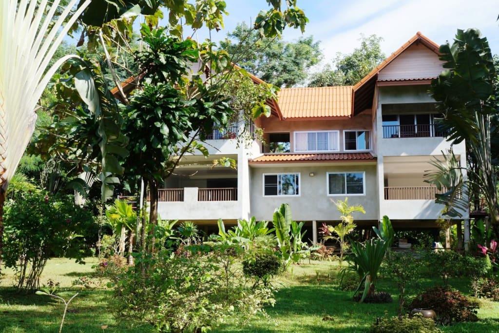 House nestled in a tropical garden.