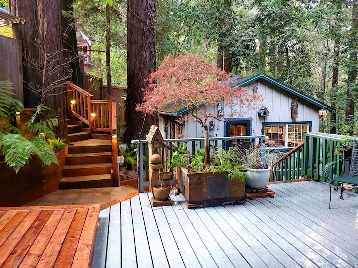 Guerneville Cottage!  Redwoods!  Hot Tub!  Fire Table!  Fast WiFi!!  Serenity Defined!