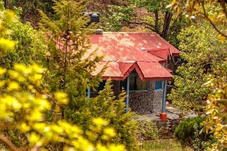 Independent Cottage@The Hammock Bhimtal-Pura Stays - Bhimtal - Pension