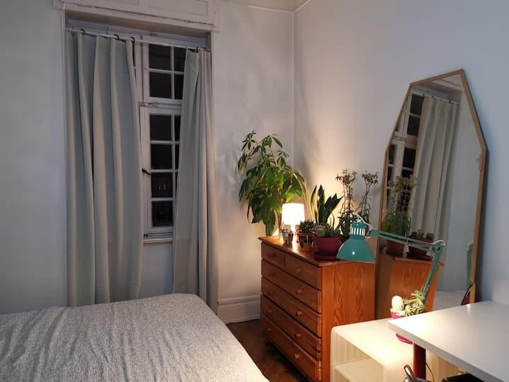 Chambre privée dans colocation chaleureuse