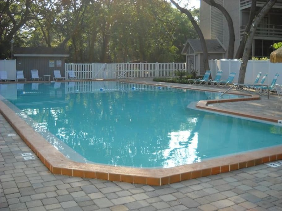Gorgeous pool surrounded by shade trees - great for relaxing almost all year round