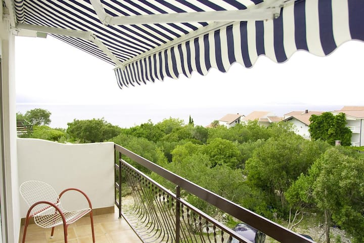 One bedroom apartment with balcony and sea view Podaca, Makarska (A-15748-d)