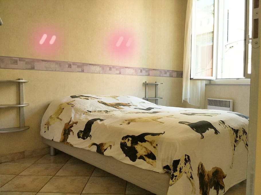 lovely double bed room with a closet