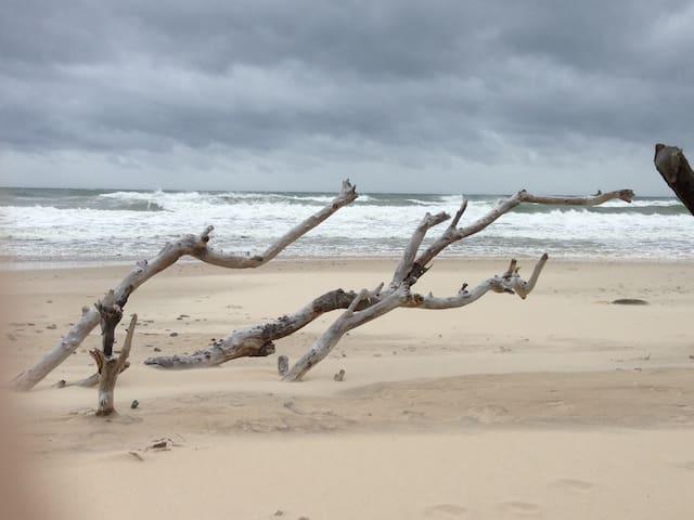 Fantastic relaxing beach escape - Old Bar - Hus