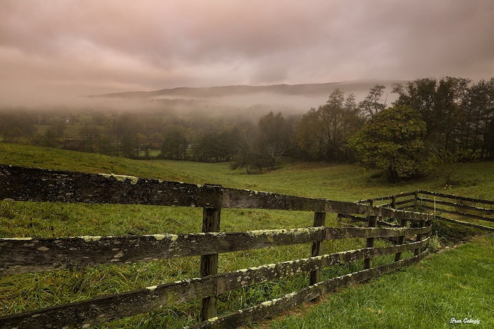 Rose Hill-Beautiful horse farm 1.7 mi. to Tech!