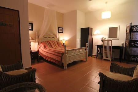 Caribbean room @ Driftwood - Melaka - Bed & Breakfast