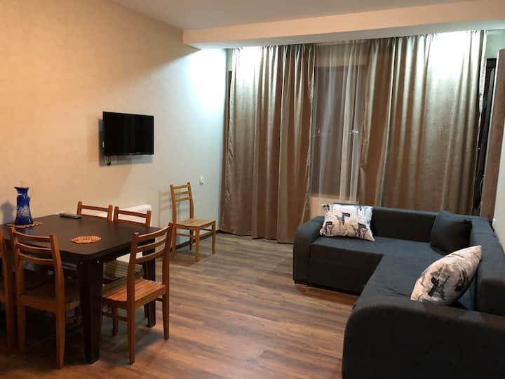 "Bakuriani ""Villa Deluxe"" apartment N2"