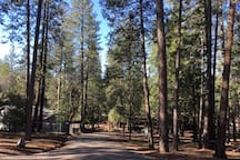 Enjoy miles of walking trails on the property!